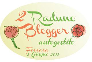 Banner raduno 2013