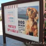 Stefano & Cecilia: Gli amici dei cani