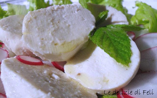 Veg-mozzarella