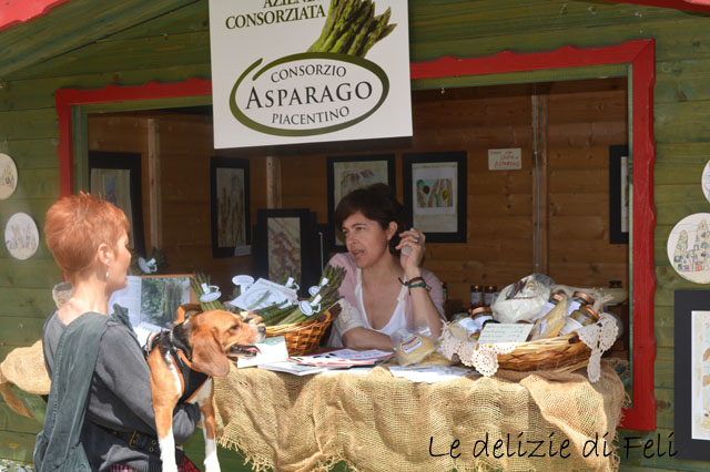 FESTIVAL ASPARAGO ITALIANO 072